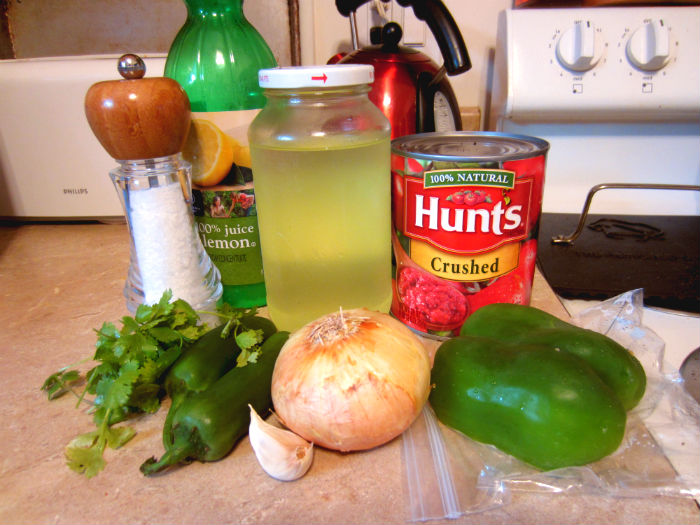 lacto fermented salsa ingredients