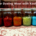 solar dyeing wool with kool aid