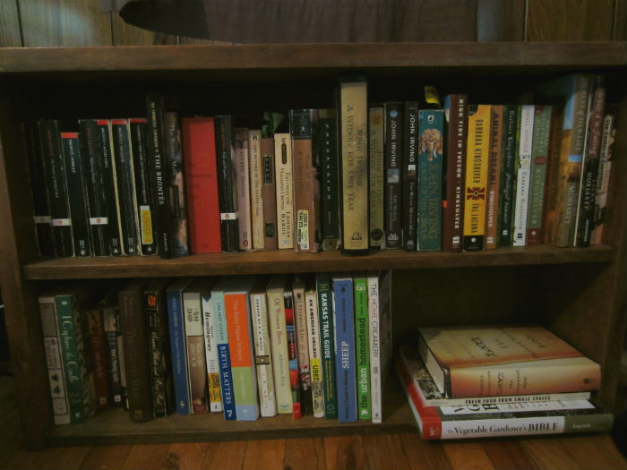 There are roughly 60 books here. Most of the young adult books and the Harry Potter books went to live in the kids' room.